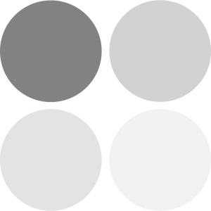 Image for color supporting greys