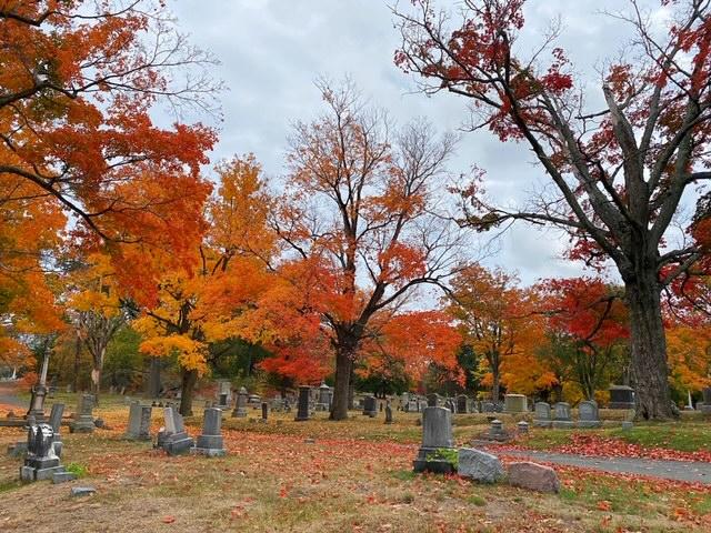 Mount Hope Fall Colors