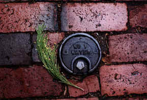 Water Meter Cover Seen in Beacon Hill