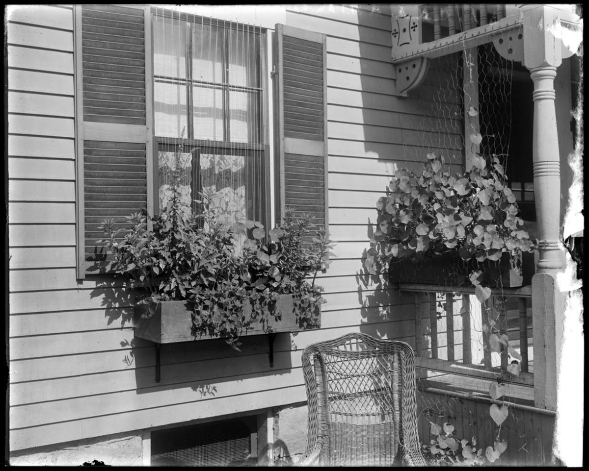 Window Box in Billerica, 1909