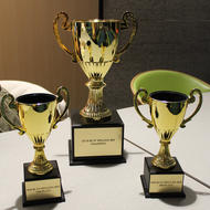 Image for bcyfspellingbeetrophies