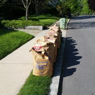Image for curbside yard waste