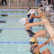 Image for bcyfswimleague